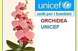 Complimenti dell'UNICEF a Gairo